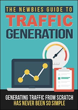 The Newbie's Guide To Traffic Generation (Report)
